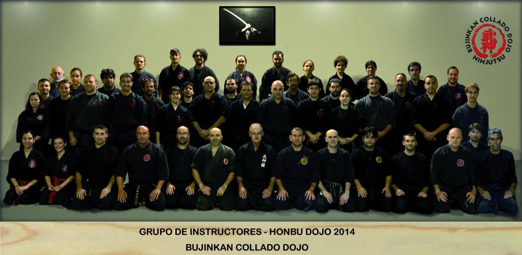 GrupoInstructoresHonbuDojo2014